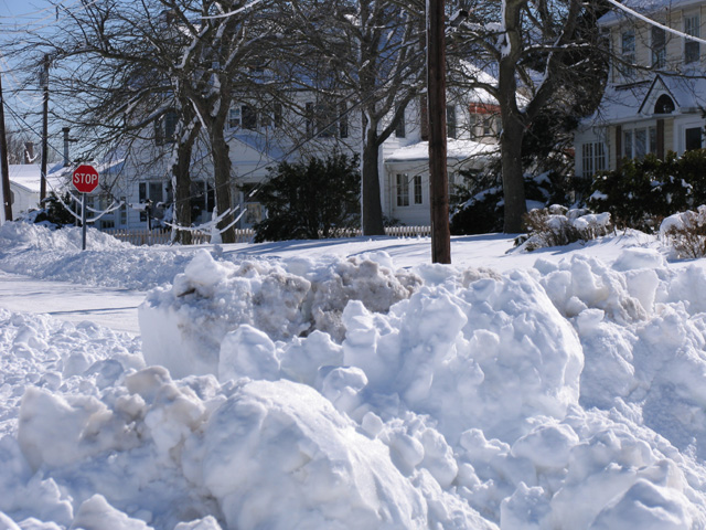 Stinking Snow in Cape May